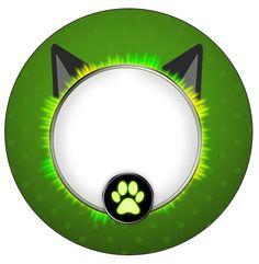 http://fazendoanossafesta.com.br/2016/08/kit-festa-miraculous-cat-noir.html/