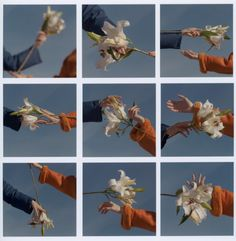 Imagem de aesthetic, flowers, and hands Foto Banner, Photocollage, Film Photography, Retro, Aesthetic Pictures, Photoshoot, Illustrations, Creative, Floral
