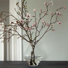 We had a magnolia tree at the house in Woodstock... This seems like a great way to bring it in the house.  Tulip Magnolia Branches
