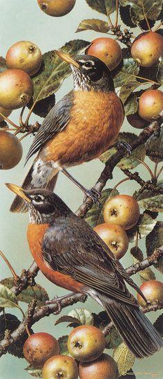 Red Robins by Carl Brenders