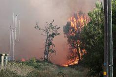 Gironde : violent incendie de forêt à Saint-Jean-d'Illac - SudOuest.fr