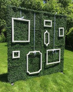 Ivy Wall Backdrop with Hanging Frames 7'x7' by WallFlowersByKate