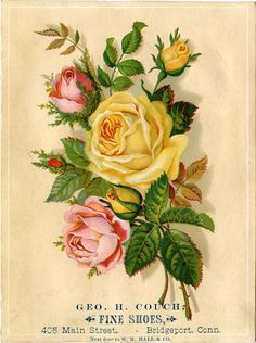 A pretty trade card from Geo. H. Couch Fine Shoes | vintage trade cards | Vintage trade card | kaarten