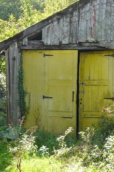 Yellow doors on old shed. Probably not original to the shed. Country Barns, Old Barns, Country Living, Country Roads, Old Doors, Windows And Doors, Barn Doors, Garage Doors, Yellow Doors