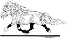 Lena Furberg horses Shetland horse / Shettis