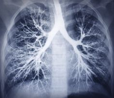 218 Best COPD News Today images in 2019 | Medical advice, News today