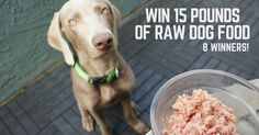 Win 15 pounds of raw dog food from Balanced Blends - 8 winners!