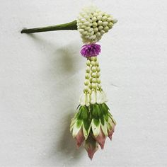 ปิ่นดอกไม้ Floral Garland, Flower Garlands, Flower Decorations, Flower Crafts, Flower Art, Hand Flowers, Thai Art, Indian Wedding Decorations, Floral Arrangements