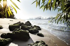 Hamburg City Beach – sunbathing on the water in the middle of the city - Travel Ideas City Beach, Nightlife Travel, Travel And Leisure, Wonders Of The World, Night Life, Beautiful Places, Around The Worlds, In This Moment, Vacation