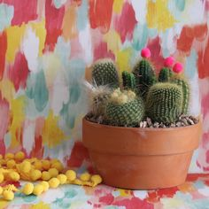 Want to add a little bit of fun to your office space? Add some pom poms to your plants to add a little more life and creativity!