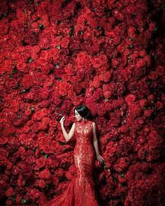 Flower Wall Wedding, Red Rose Wedding, Wedding Wall, Creative Fashion Photography, Fashion Photography Inspiration, Color Photography, Amazing Photography, Red Images, Baby Shower Backdrop