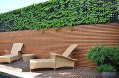 chaises longues en rotin, brise-vue en lattes de bois et plantes grimpantes sur la terrasse