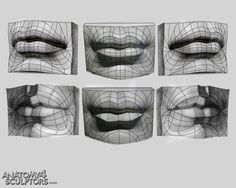 Anatomy for artists Facial Anatomy, Head Anatomy, Anatomy Study, Anatomy Drawing, Anatomy Reference, Art Reference, Zbrush Anatomy, Concept Art Landscape, Art Couple