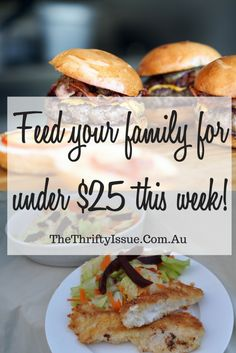 Under $25 for 1 week of groceries and cleaning products - The Thrifty Issue