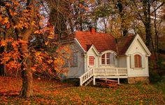 a secret getaway place for fairies - I'd improve the esthetics of the place though :)