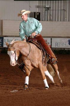 .. Western Horse Tack, Western Riding, Horse Barns, Western Saddles, Horse Stalls, Palomino, Horse Training Tips, Horse Tips, American Quarter Horse