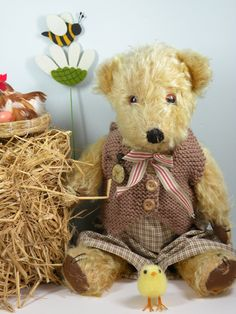 Samual a lovely old English bear C1950 who loves the country side