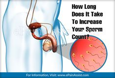 It takes about 72 days' time to witness increase in your sperm count. Men Health, Health Tips, Fertility Foods, Increase Testosterone, Your Man, Counting, Confidence, Take That, Strong