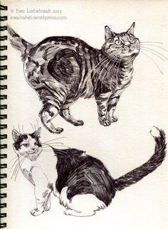 ballpoint pen cats