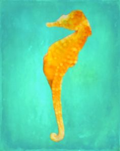 Seahorse Art Print - Aqua Yellow Orange Nursery Children Room Ocean Wall Art Sea Home Decor Photograph. $25.00, via Etsy.