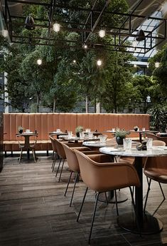 Biophilic & Sustainable Interior Design · How to bring biophilic design into restaurants · DforDesign Gym Interior, Interior Design, Natural Bathroom, Sustainable Furniture, Cozy Nook, Restaurant Furniture, Hospitality Design, Swinging Chair, Commercial Interiors
