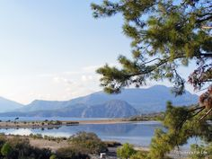 Iztuzu Beach near #Dalyan, southwest Turkey.