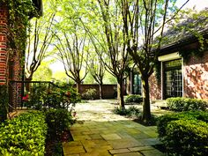 """""""Beautiful weather in Houston and view of Houston Hospice courtyard where we will host a Spring Mingle for TMC medical professionals at 4 p. Hospice, Houston, Sidewalk, Events, Garden, Beautiful, Garten, Side Walkway, Lawn And Garden"""