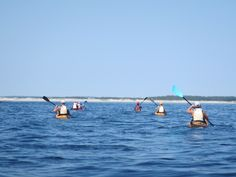 Guided Sea Kayak Day Tours