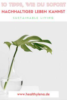 10 tipps, wie du schnell nachhaltiger leben kannst