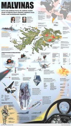 The Battle of the Falkland Islands Army History, World History, History Timeline, History Facts, Falklands War, Military Insignia, War Machine, Cold War, Social Studies