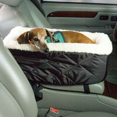 Shasta would love this she dudes right there anyways Car bed. Cute and practical for small dogs or puppies. Could probably make this out of a 31 bag and a dog bed/fluffy blanket Car Bed, Dog Car Seats, Yorkies, Schnauzer Mix, Border Terrier, Dachshund Love, Dog Accessories, Dog Life, Chihuahua