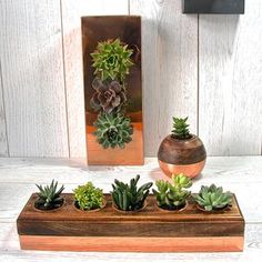 Copper And Wood Five Succulent Holder