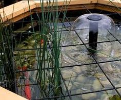 Water Feature Design | Child Safe Ponds