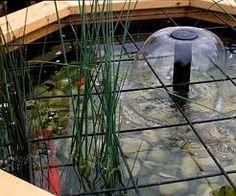 Water Feature Design   Child Safe Ponds