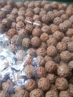 I Rudraksha farmers from Indonesia, if you are interested to buy please contact me.  Semi smooth