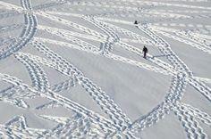 I cerchi nella neve di Simon Beck