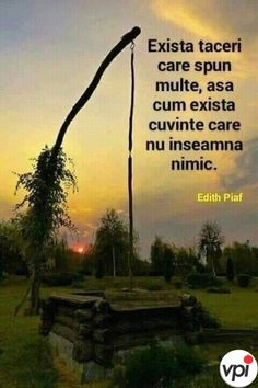 Nimic nu pică din cer - Viral Pe Internet Let Me Down, Let It Be, Psychology, This Or That Questions, Stele, Quotes, Movie Posters, Instagram, Decor