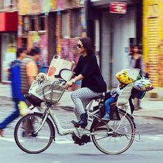 The family van. #bikenyc #bike #chinatown #newyork #manhattan #bicycle #nyc #puppy #mother #mamachari