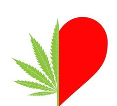 ♥  Legalize It, Regulate It, Tax It!  http://www.stonernation.com Follow Us on Twitter @StonerNationCom #stonernation