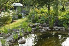 Gorgeous garden pond with shallow end to stop small mammals drowning.