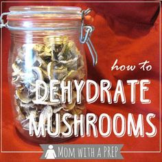 """Mom with a PREP 