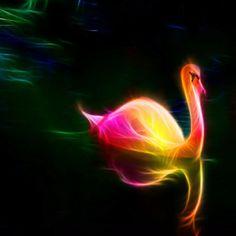 Fractal Art - Swan