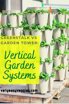 Looking for vertical garden ideas to grow more plants in a small space garden? Compare two vertical gardens, the Greenstalk Garden and the Tower Garden 2, & learn which vertical planter is right for your vegetable garden. The ultimate high intensity planting & space saving container gardening, grow up to 50 plants in a few square feet. Great for growing strawberries, beans, fall garden vegetables like lettuce, kale & chard, salad greens, carrots, peppers, even growing tomatoes or summer… Vertical Garden Systems, Vertical Garden Planters, Vertical Gardens, Plant Tower, Tower Garden, Strawberry Planters, Strawberry Garden, Container Gardening, Gardening Tips
