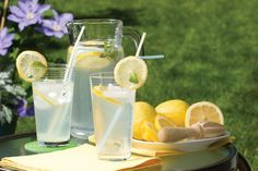 Inspired by a recipe developed by Linda Dowling from the Happy Valley Lavender Farm in Metchosin, BC. How To Make Lemonade, Homemade Lemonade, Lemonade 6, Happy Valley, Epicure Recipes, Stem Challenge, Us Foods, Lemon Water, Diy Food