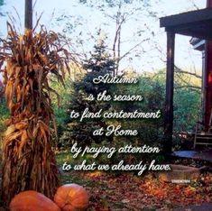 Autumn Quote quote autumn fall quotes