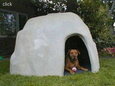 Our dog house looks natural in any type of yard or setting. Complete with composite floor with indoor/outdoor carpeting for ease in cleaning. Made of 100% heavy-duty fiberglass our dog shelters will never rot or leak. Outlasts any wood dog house. Spiff up your kennel area and do something unique for your dog! Available in different colors, accommodates two large dogs comfortably.