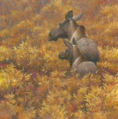 Robert Bateman -Fall Forage Moose Cow