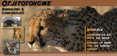 Otjitotongwe, Bungalows und Campingplatz