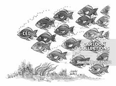 """A school of fish following one fish who is labeled """"CEO"""". Political Cartoons, Funny Cartoons, Business Cartoons, One Fish, Politics, Humor, Comics, School, Illustration"""