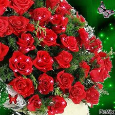 only rose's n flowers Beautiful Love Pictures, Beautiful Bouquet Of Flowers, Flowers Gif, Beautiful Flower Arrangements, Beautiful Gif, Types Of Flowers, Beautiful Roses, Rosas Gif, Valentines Gif